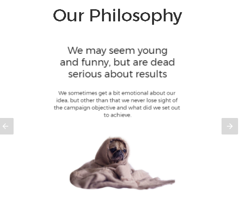 Our Philosophies - AMP version